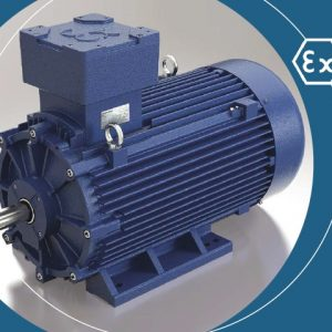Explosion Proof Electro Motor